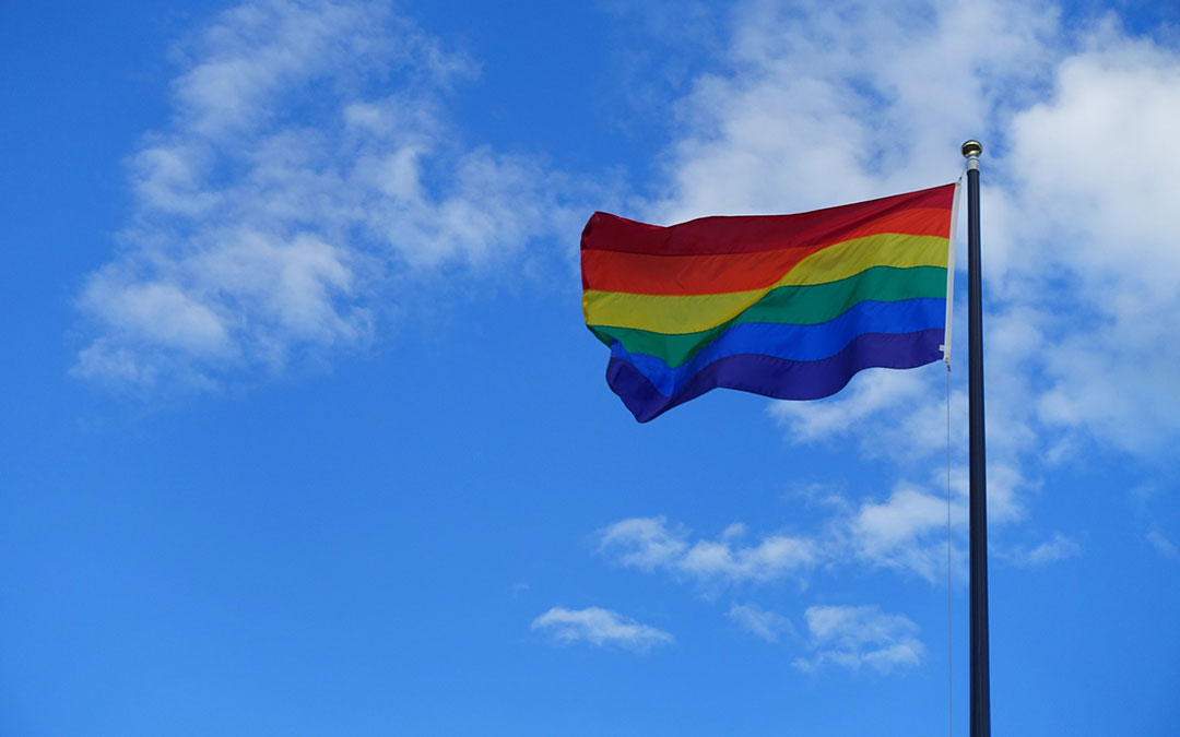 Clarity and Charity: The Catholic Response to Challenge of Homosexuality